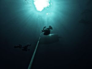 Learning to Freedive and why? Blue Water Freediving School