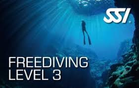 ssi Level3 Freediving