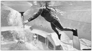 Freediving in Germany Blue Water Freediving School